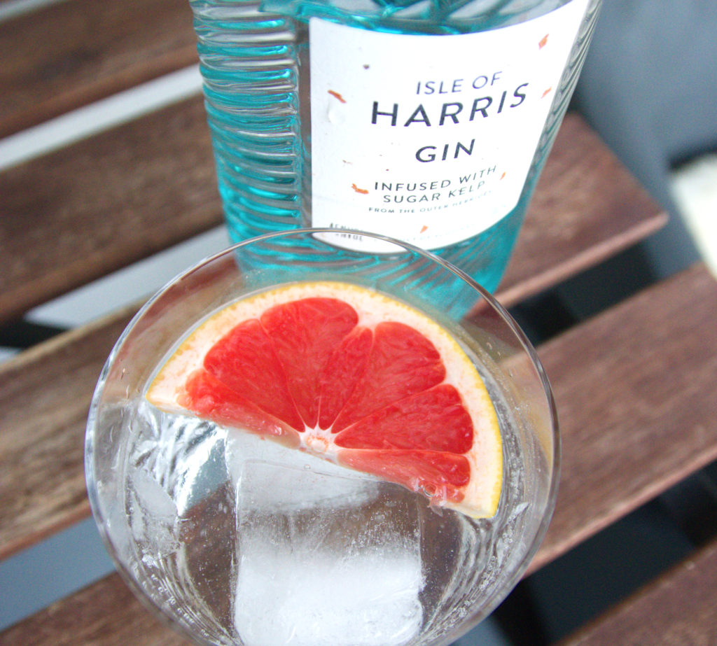 Gin and Tonic with a slice of red grapefruit